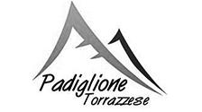 Logo-partner-torrazzese